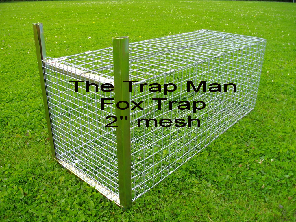 These large mesh FOX traps will be sent folded and require simple assembly, instructions supplied. (we also have a fox trap assembly video on request)