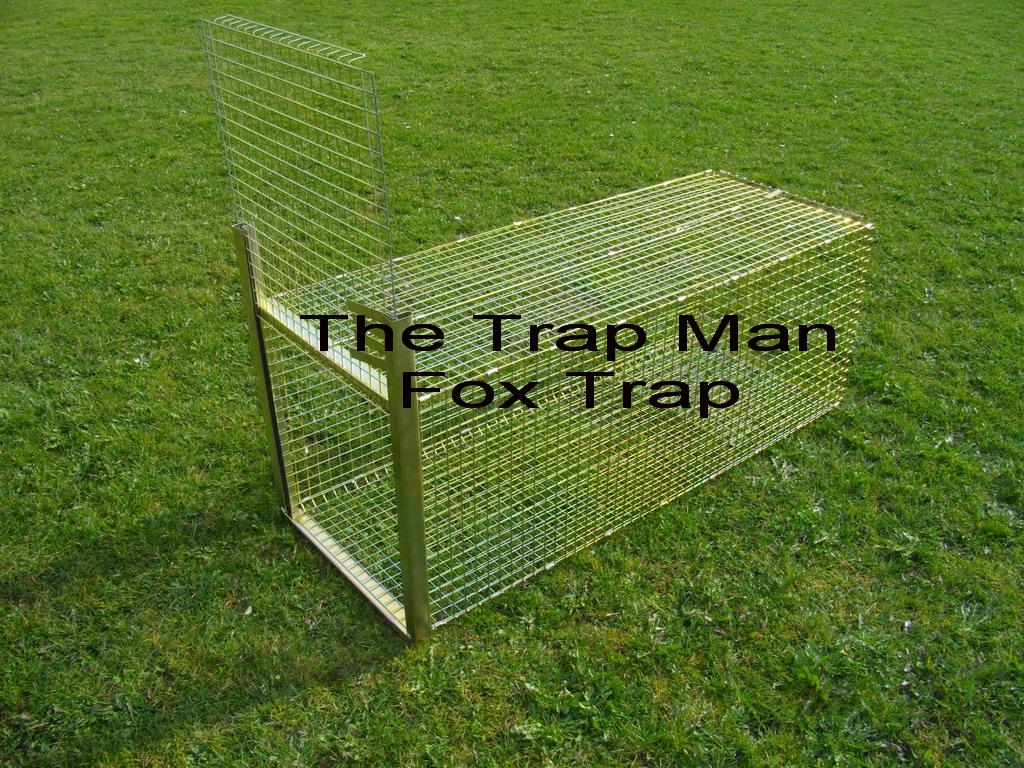 Dog Trap Uk
